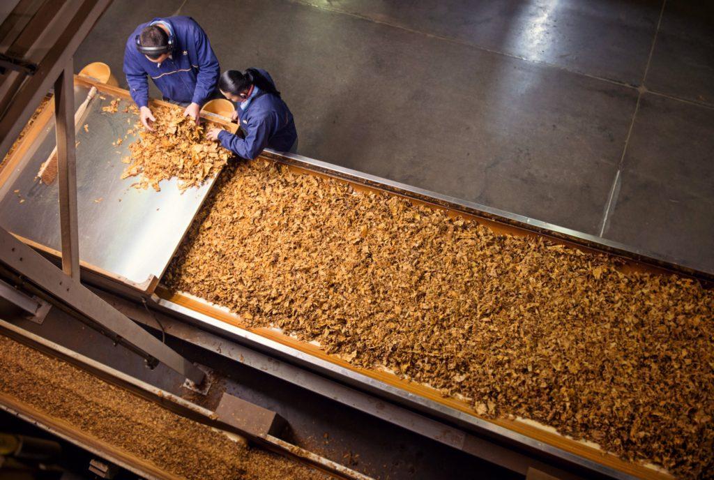 Cea mai mare companie de tutun din România își extinde fabrica de la Ploiești. Câte sute de milioane va investi și câte locuri de muncă va crea