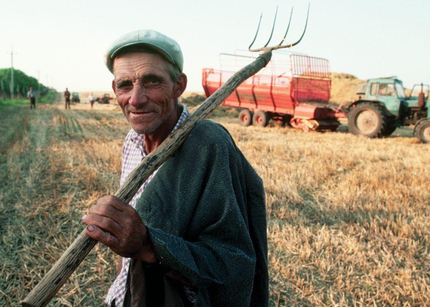 Смешные картинки про фермеров