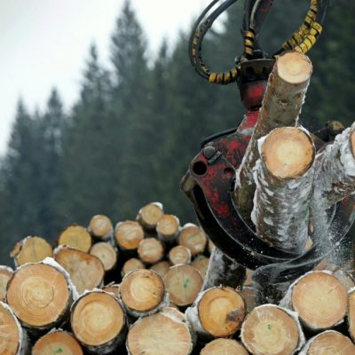 """PARTENERIAT: Uniunea Europeană intră în """"epoca lemnului"""""""
