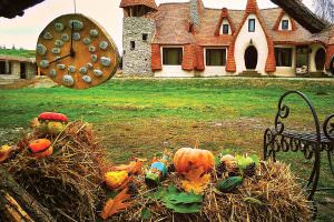 Viața la țară: de ce peste un milion de orășeni au dat asfaltul pe ulița din sat