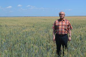 Antreprenor: Statul nu te încurajează să fii fermier. Nu este sănătos pentru România ca recolta locală să plece direct în port