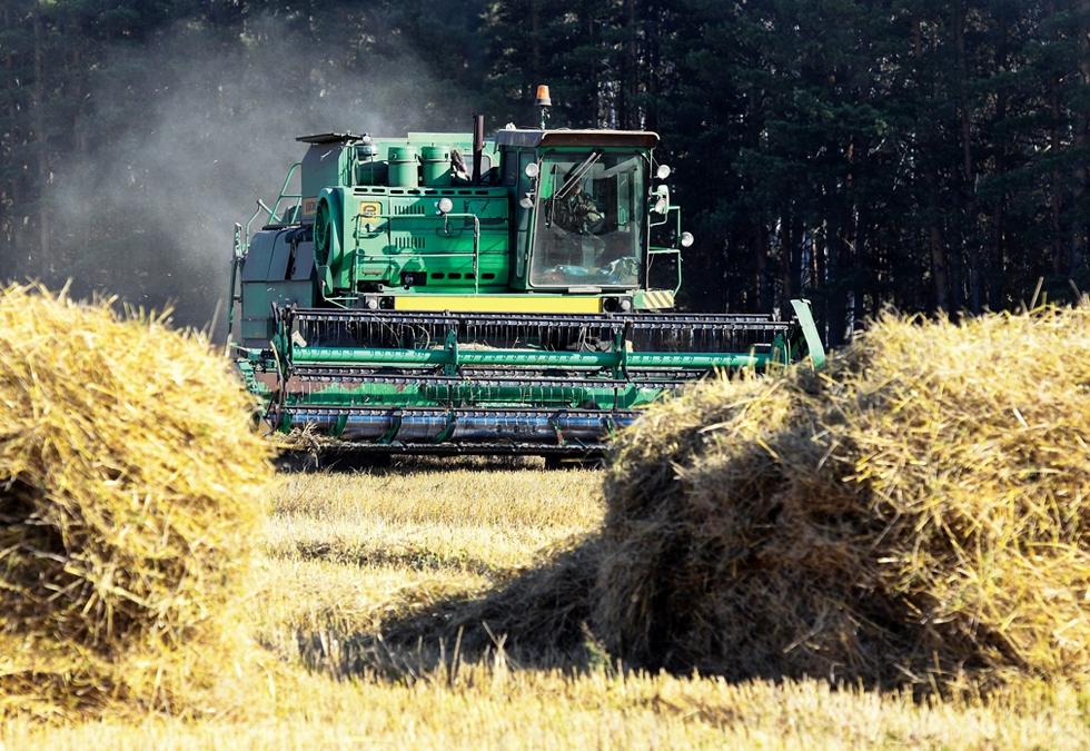 Logica dobânzilor: de ce a intrat o bancă europeană în acționariatul unuia dintre cele mai mari grupuri agricole din România?