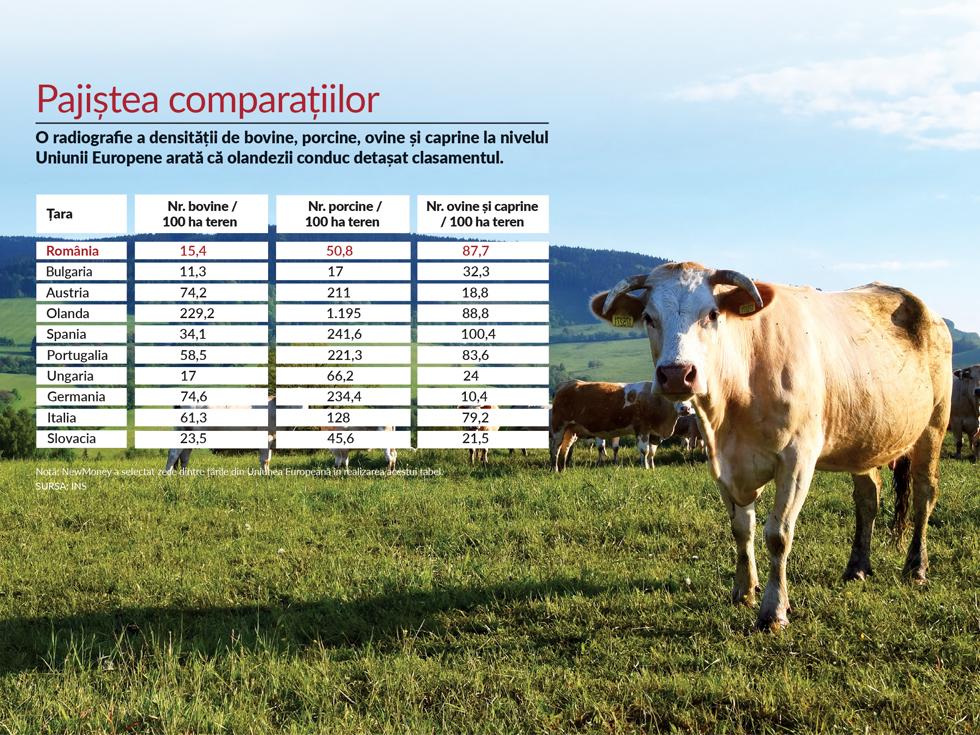 Importăm din ce în ce mai mult. De ce am ajuns să producem cu un sfert mai puțină carne decât în 1990