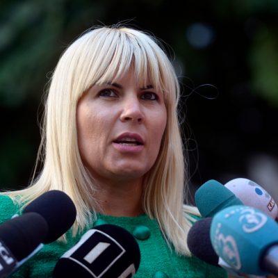 Elena Udrea și Ioana Băsescu, condamnate la închisoare cu executare