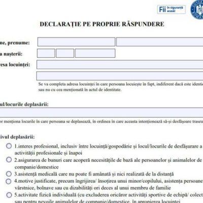 Platforma STS de unde se poate completa online declarația pe proprie răspundere